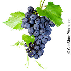 Fresh bunch of grapes with leaves isolated on a white...