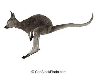 Joey - 3D digital render of a jumping grey baby kangaroo...
