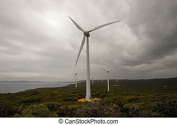 A scenic view of Albany Wind Farm - Albany Wind Farm near...