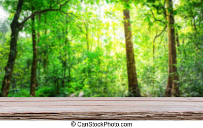 Forest with wood planks floor