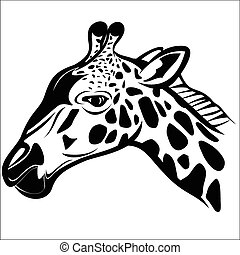 Giraffe head 1 - Vector illustration : Giraffe head on a...