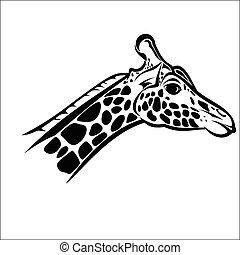 Giraffe head 2 - Vector illustration : Giraffe head on a...
