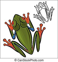 Red-eyed tree frog - Vector illustration : Red-eyed tree...