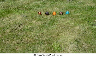 hand throw Easter egg - Traditional Easter game. Hand put...
