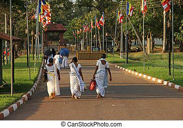 Sri lankan woman - Some sri lankan woamn are walking on the...