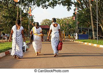 Sri Lankan woman - Some Sri lankan woman are walking on the...