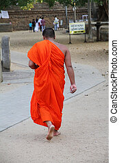 Buddhist monk - A buddhist monk is going to the temple