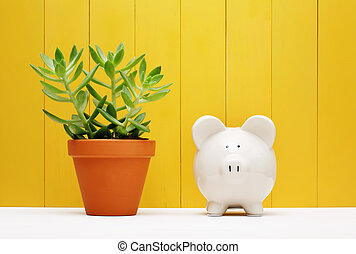 Piggy Bank Beside Small Plant on a Pot - White Piggy Bank...