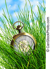 Vintage pocket watch in green grass - Vintage pocket watch...