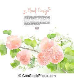 Vector Watercolor Flowers Hydrangea - Pink Vector Watercolor...