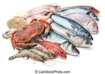 morze, jadło,