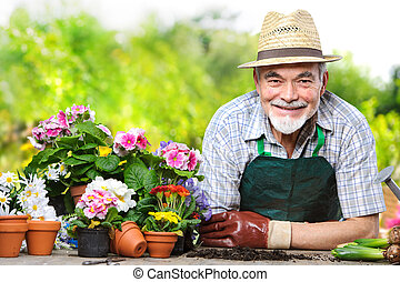 Senior in the flower garden - Portrait of senior man in the...