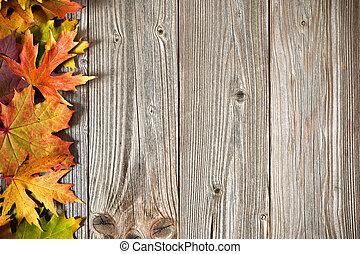 Outono, folhas, colorido, fundo