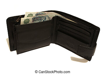 Full wallet on the white background isolated