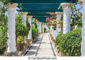 Pergola Sources Kallithea Terme Kalithea Rhodes Island...