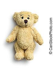 teddy, oso,