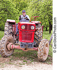 Young farmer driving his tractor through a plum trees...