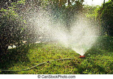 Lawn irrigation - Home garden sprinkler in action