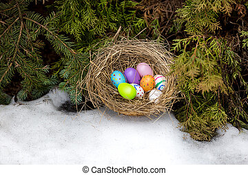 Closeup shot of painted Easter eggs hidden in nest at...