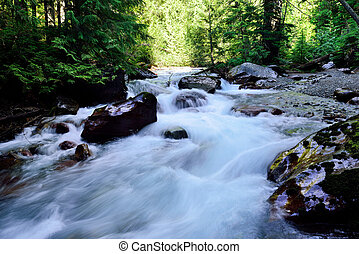 whitewater along the Avalanche lake trail in Glacier...