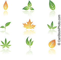 Leaves icons isolated on a white background, vector...