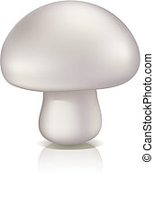 Mushroom vector illustration isolated on a white background