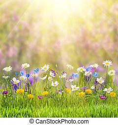 Floral meadow - Beautiful spring floral meadow with wild...