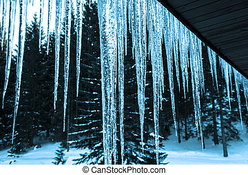 Icicles under the roof