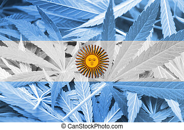 Argentina Flag on cannabis background. Drug policy....
