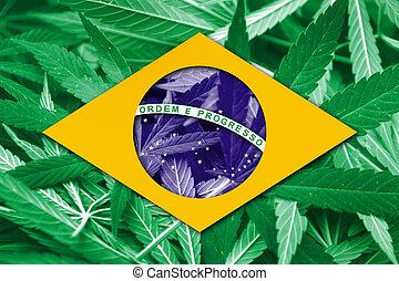 Brasile, bandiera, su, canapa, fondo., droga, policy.,...