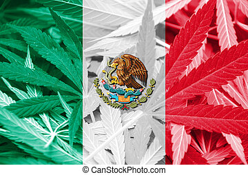 Mexico Flag on cannabis background Drug policy Legalization...