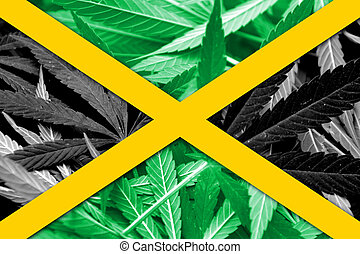 Jamaica Flag on cannabis background Drug policy Legalization...