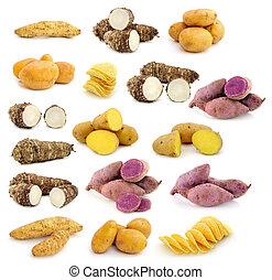 taro roots , sweet potatoes , Potato chips on white...