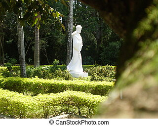 St Francis - This picture shows a statue of St Francis in a...