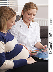 Midwife Making Home Visit To Expectant Mother