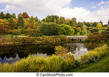 Autumn Pond - A beautiful autumn scene with a pond...