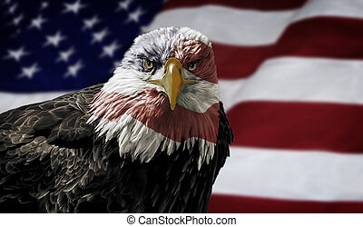 American Bald Eagle on Flag - Oil painting of a majestic...