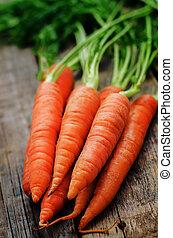 carrot, ,