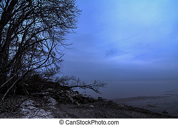 Lake Erie Coastline - The misty and cold shore of Lake Erie...