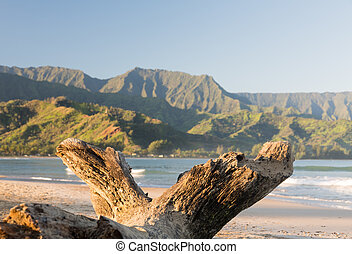 Hanalei Bay on island of Kauai - Bay from Hanalei beach with...