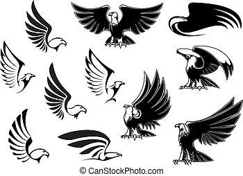 Aquile, per, logotipo, tatuaggio, o, araldico, disegno,