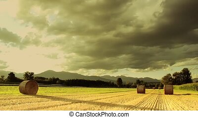 countryside - Agriculture, farmland Landscape with hay bales...
