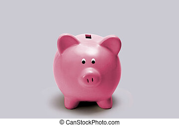 Little Pink Piggy Bank