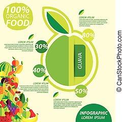 guava infographics - guava, infographics fruits vector...