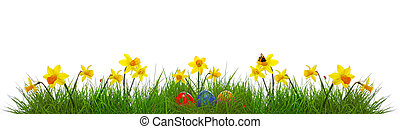 Colorful easter eggs. - Green grass and yellow...