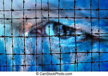 Eye against Barbwire