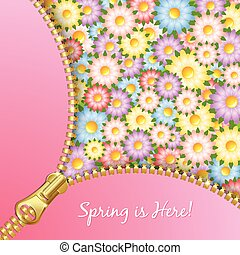 Spring zipper with flowers - Unzipped zipper with spring...
