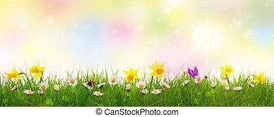 Green grass and colorful spring flowers.Easter background.