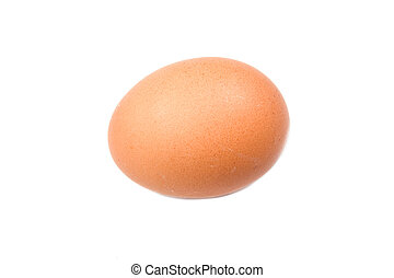 Photo of one brown hen egg