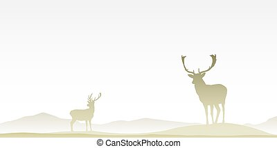 Two Male Stag Deers